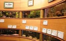 La Maison de la Pêche et de la Nature